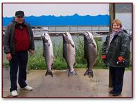 Salmon-fishing-Comments
