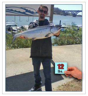 Salmon-fishing-Trips-Wallin